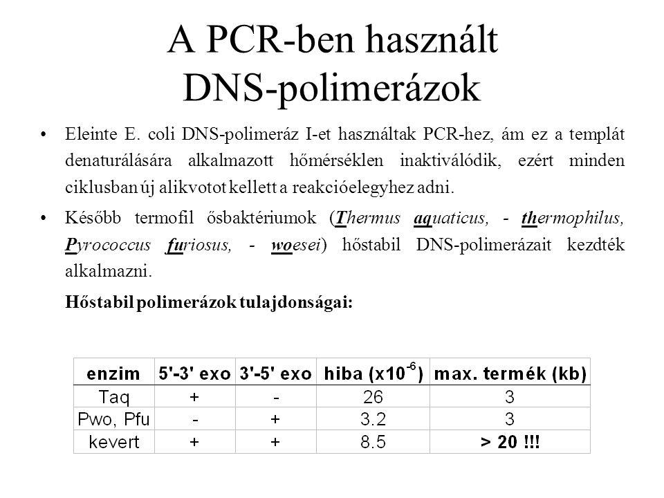 A PCR-ben használt DNS-polimerázok