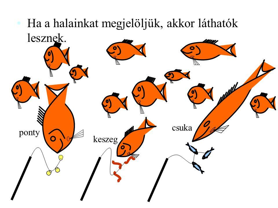 Ha a halainkat megjelöljük, akkor láthatók lesznek.