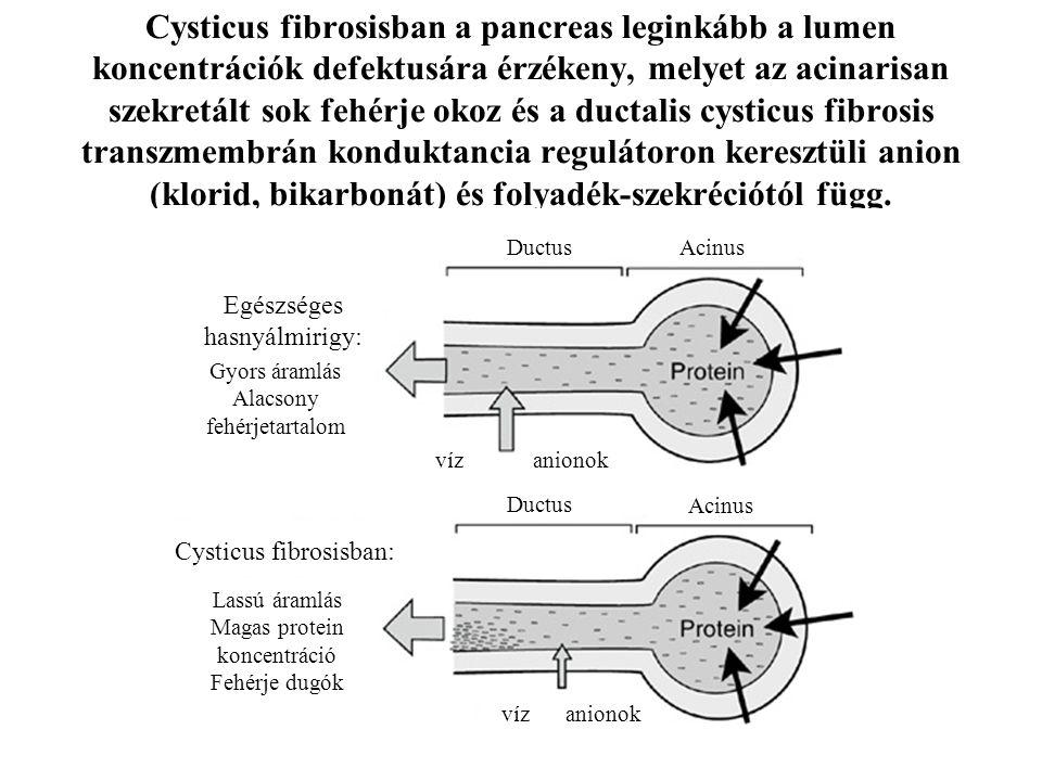 Cysticus fibrosisban: