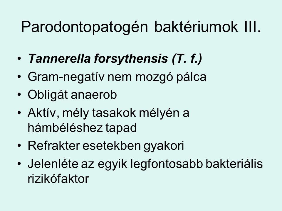 Parodontopatogén baktériumok III.