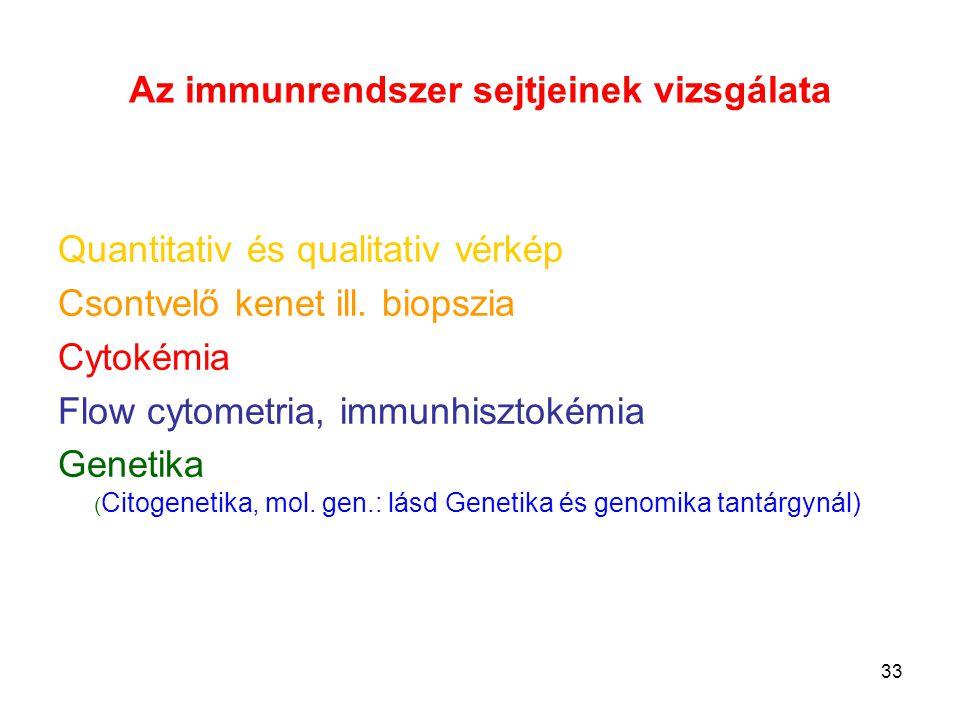 Az immunrendszer sejtjeinek vizsgálata