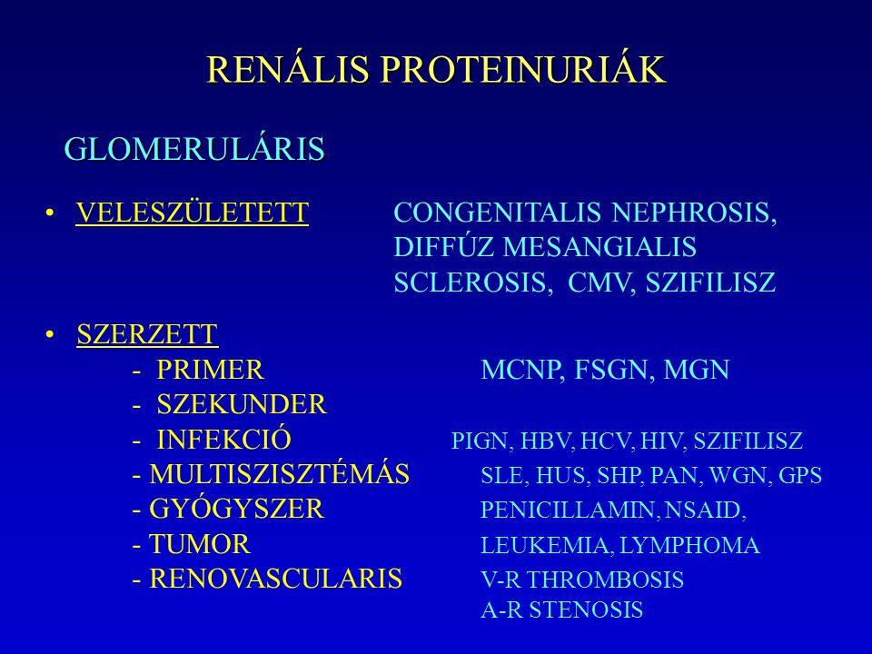 RENÁLIS PROTEINURIÁK GLOMERULÁRIS