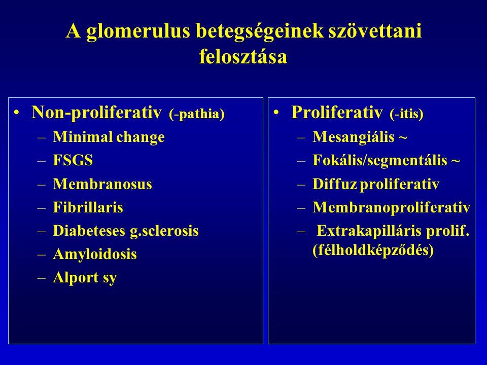A glomerulus betegségeinek szövettani felosztása