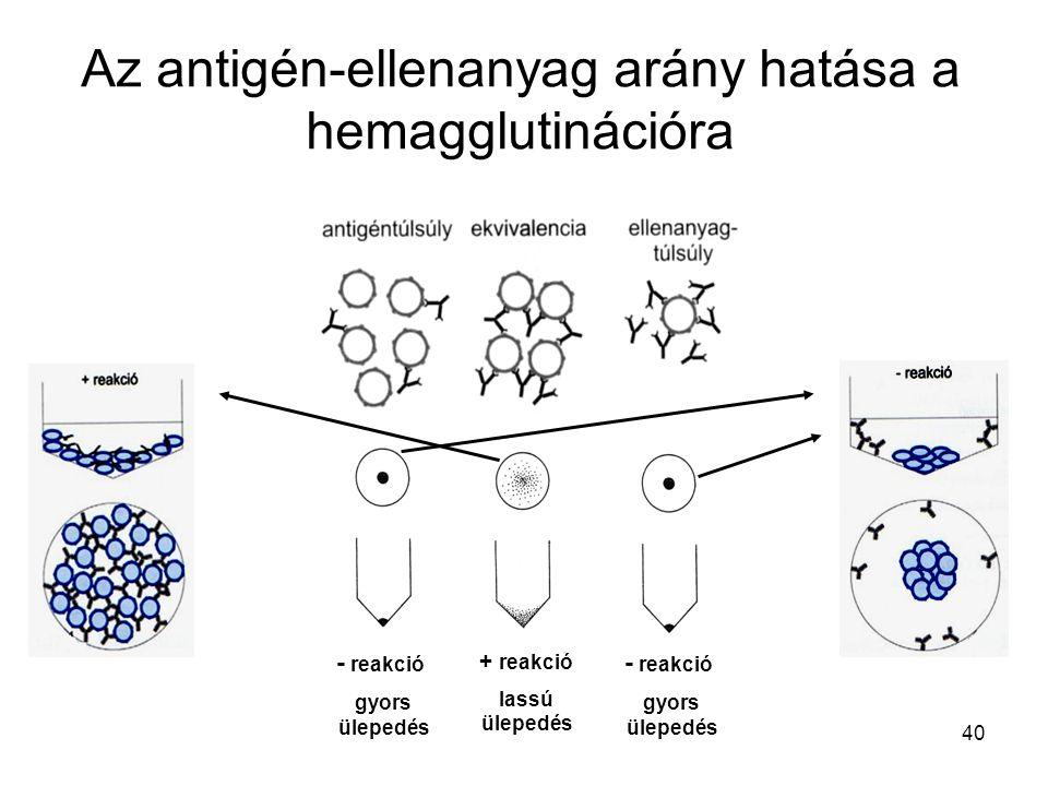 Az antigén-ellenanyag arány hatása a hemagglutinációra