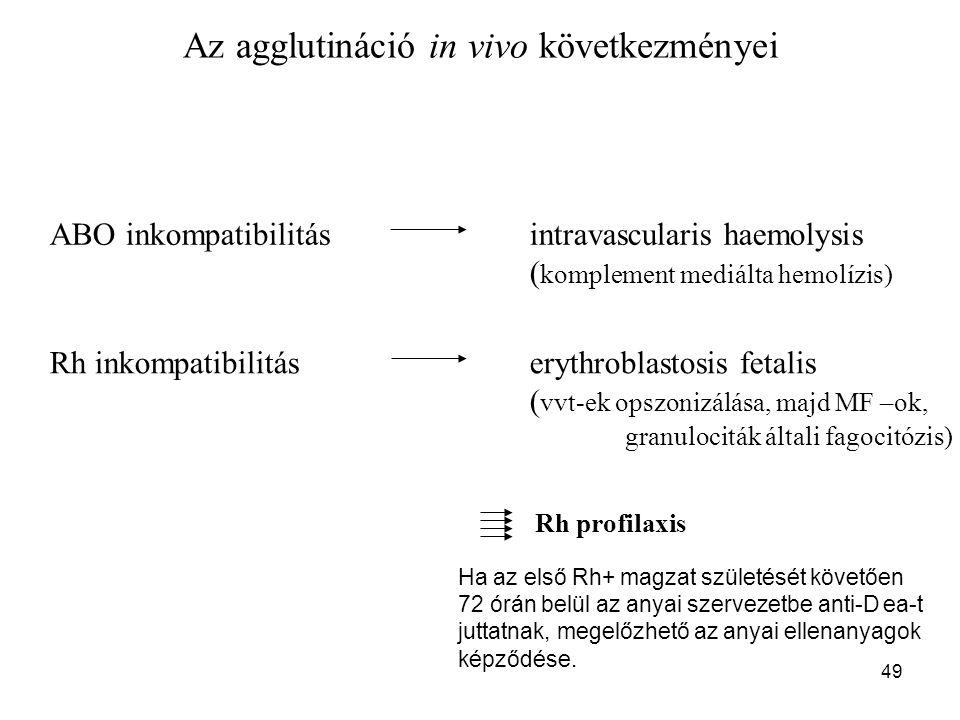 Az agglutináció in vivo következményei