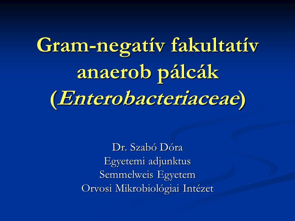 Gram-negatív fakultatív anaerob pálcák (Enterobacteriaceae)