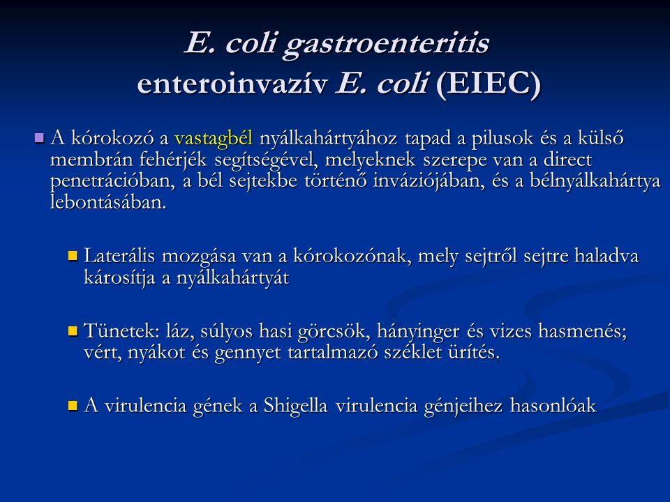 E. coli gastroenteritis enteroinvazív E. coli (EIEC)