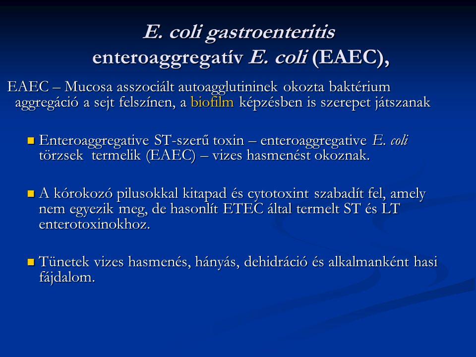 E. coli gastroenteritis enteroaggregatív E. coli (EAEC),