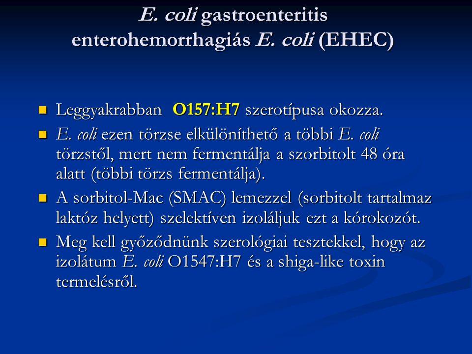 E. coli gastroenteritis enterohemorrhagiás E. coli (EHEC)