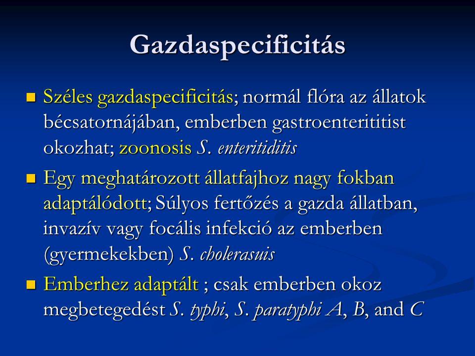 Gazdaspecificitás Széles gazdaspecificitás; normál flóra az állatok bécsatornájában, emberben gastroenterititist okozhat; zoonosis S. enteritiditis.