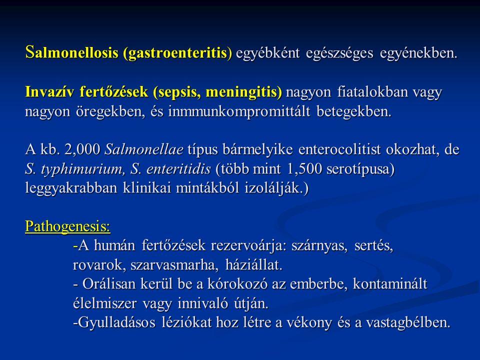 Salmonellosis (gastroenteritis) egyébként egészséges egyénekben