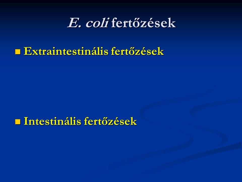 E. coli fertőzések Extraintestinális fertőzések