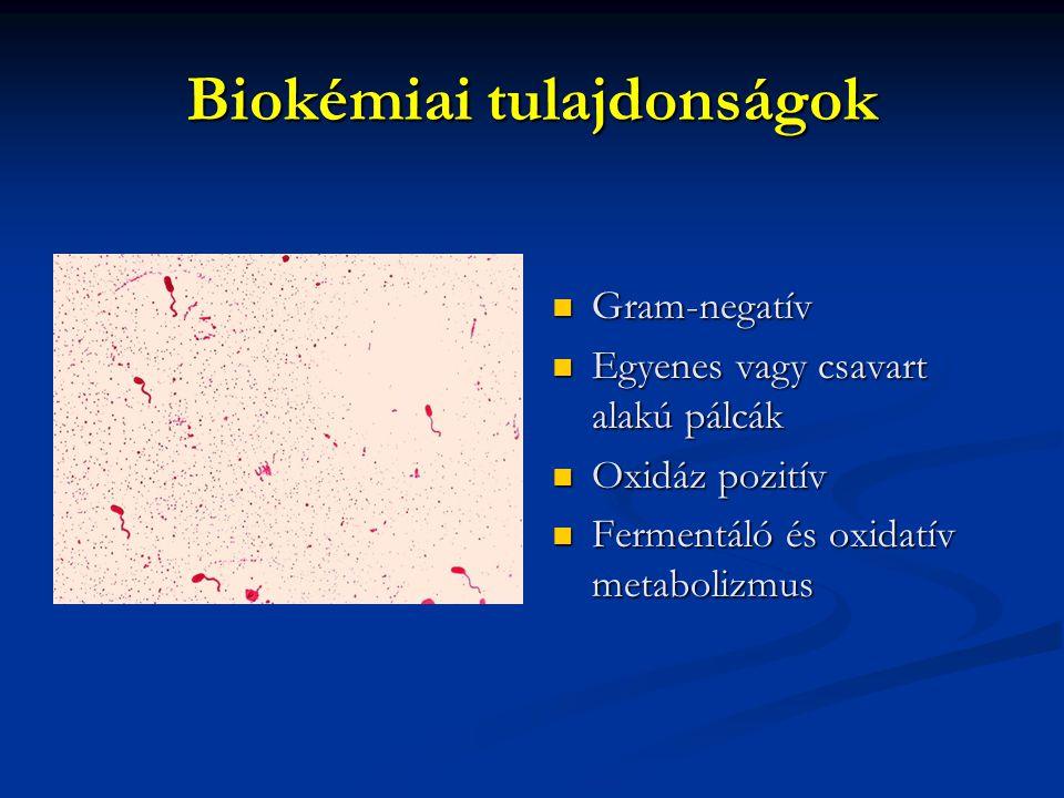 Biokémiai tulajdonságok