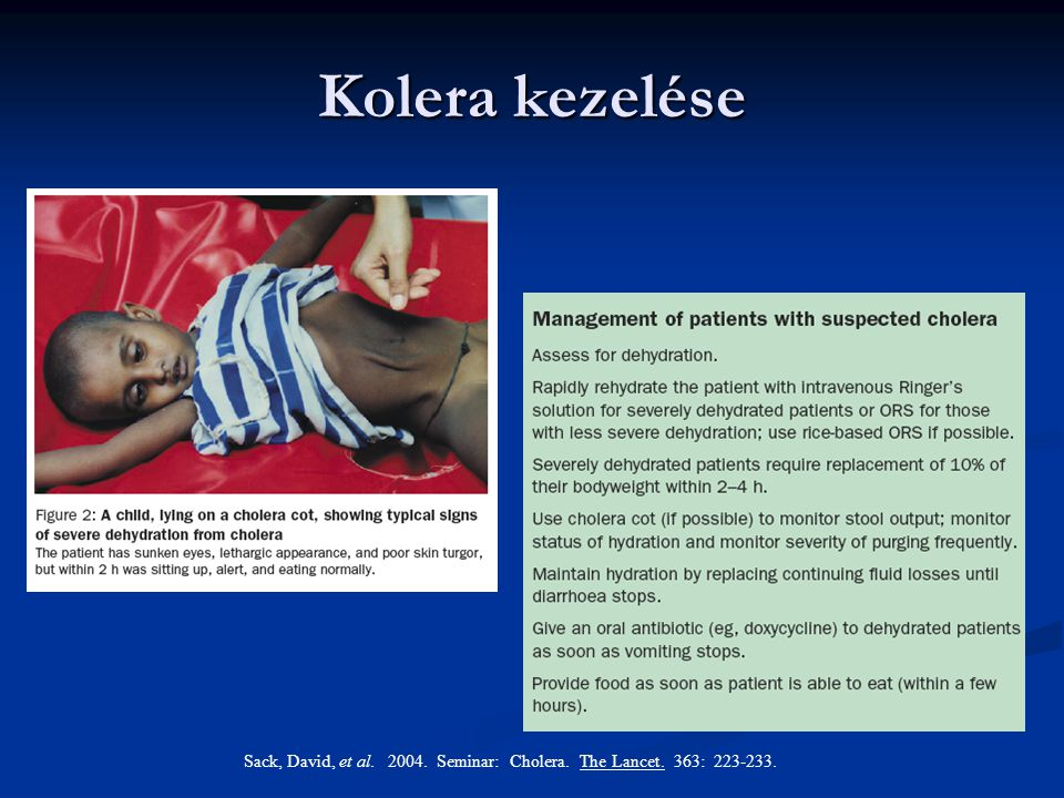 Sack, David, et al. 2004. Seminar: Cholera. The Lancet. 363: 223-233.