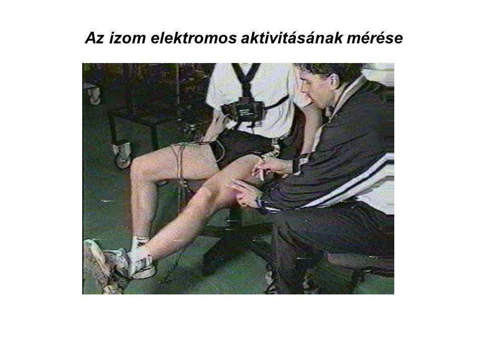 Az izom elektromos aktivitásának mérése