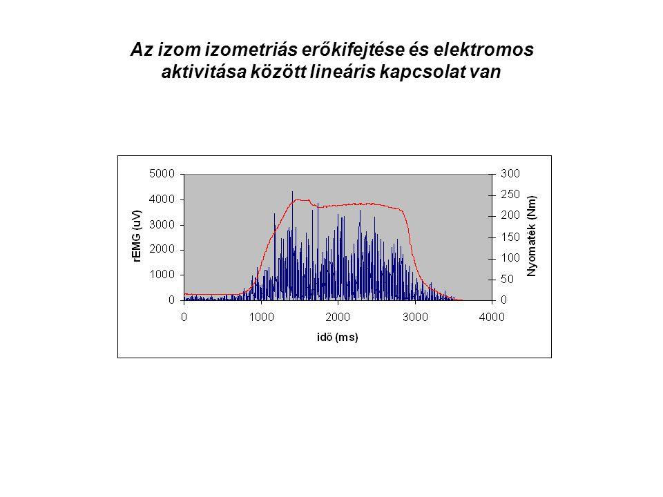 Az izom izometriás erőkifejtése és elektromos aktivitása között lineáris kapcsolat van