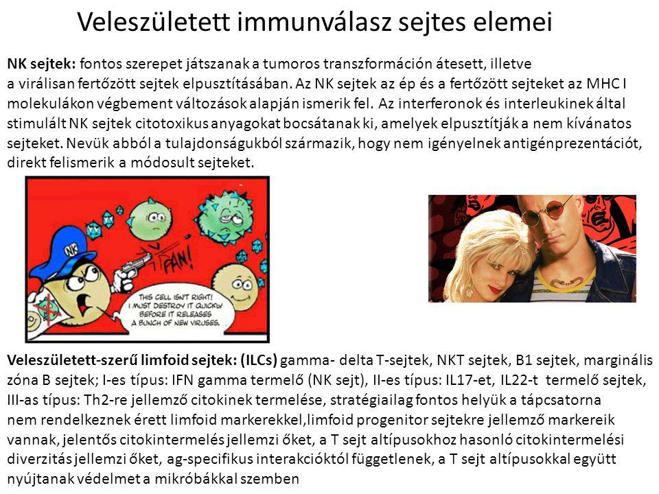 Veleszületett immunválasz sejtes elemei