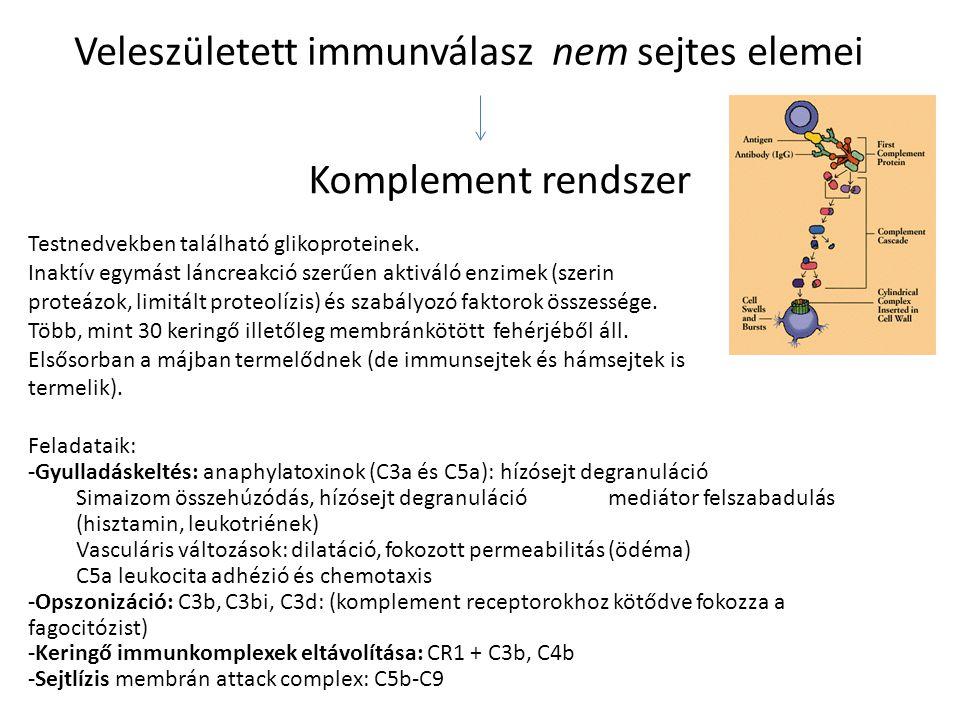 Veleszületett immunválasz nem sejtes elemei