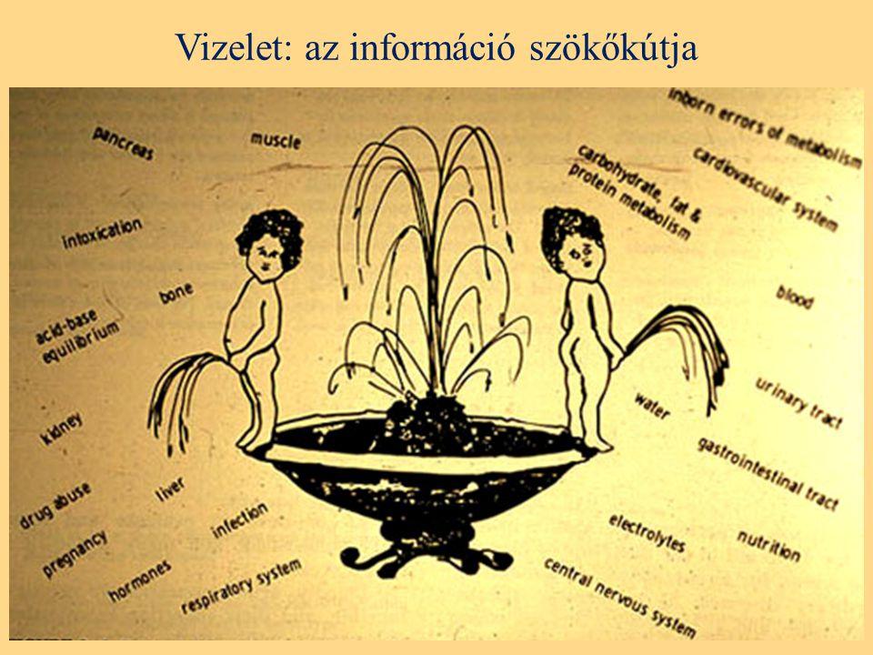 Vizelet: az információ szökőkútja