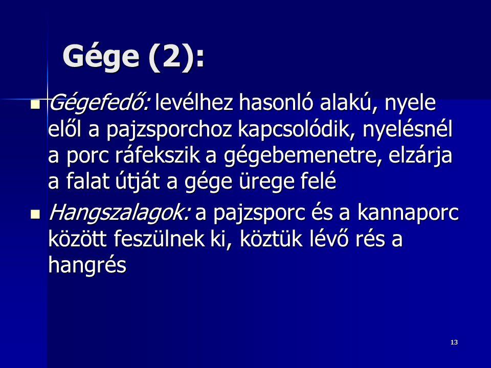 Gége (2):