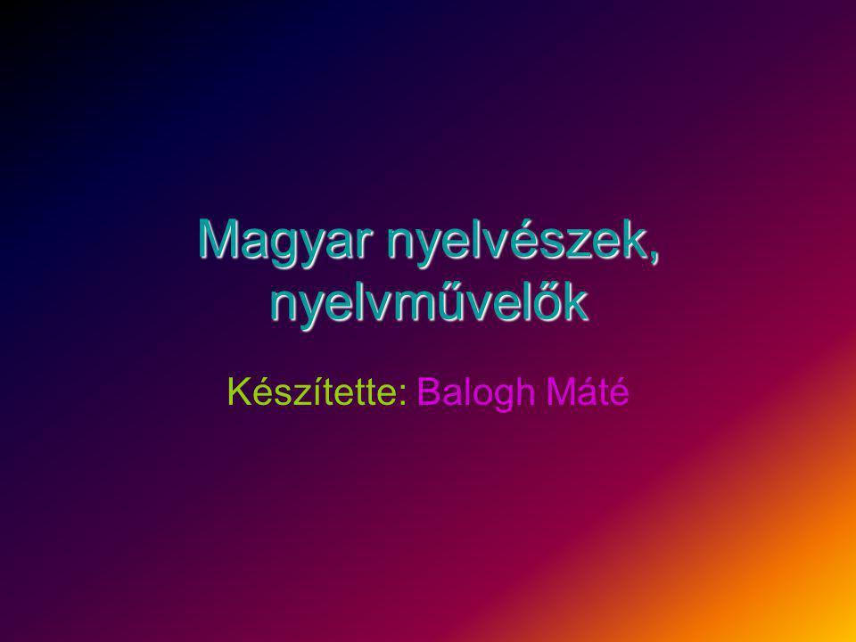 Magyar nyelvészek, nyelvművelők