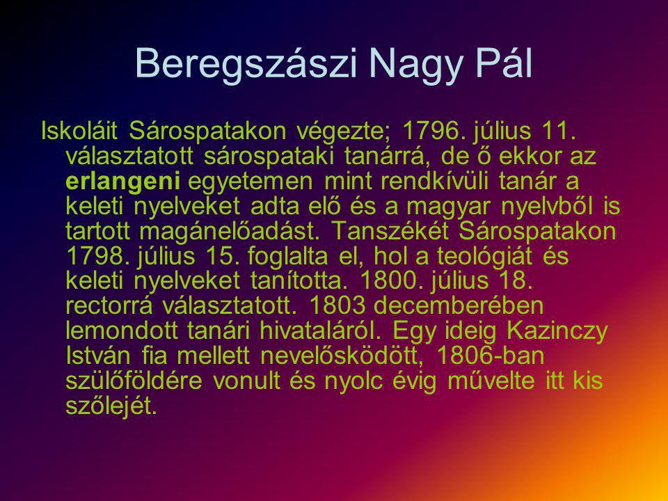 Beregszászi Nagy Pál