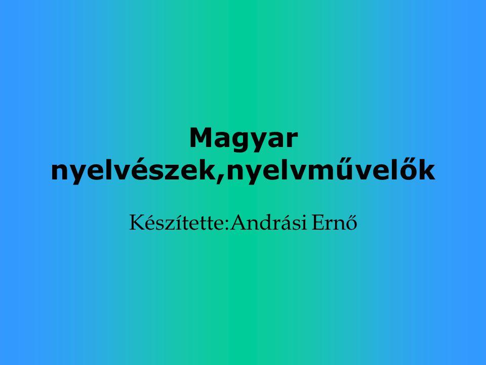 Magyar nyelvészek,nyelvművelők