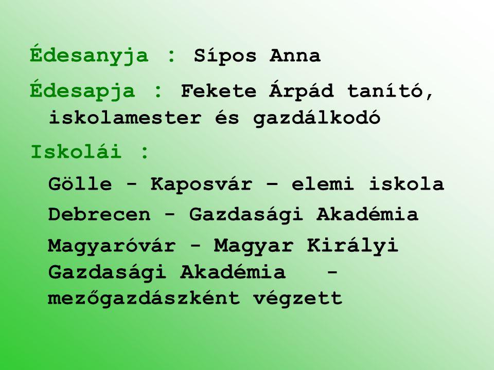 Édesapja : Fekete Árpád tanító, iskolamester és gazdálkodó Iskolái :
