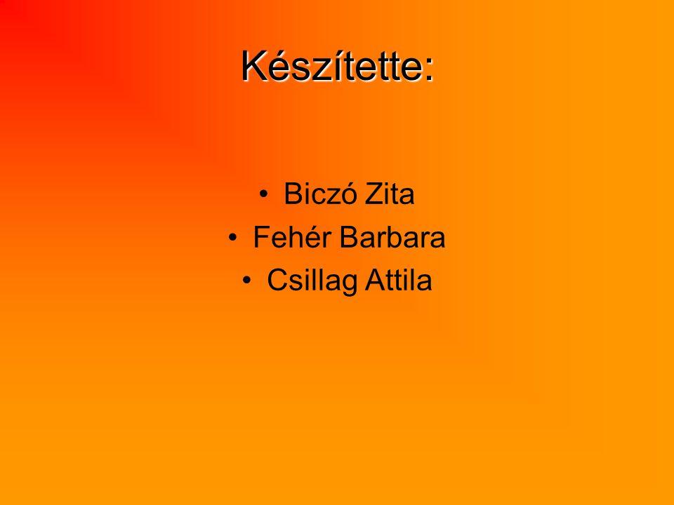 Készítette: Biczó Zita Fehér Barbara Csillag Attila