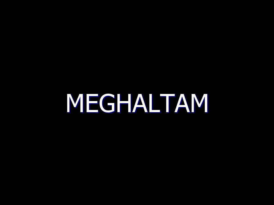 MEGHALTAM