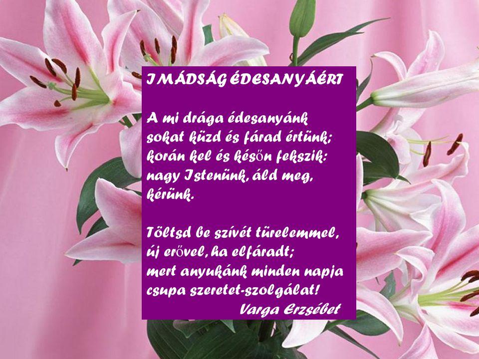 IMÁDSÁG ÉDESANYÁÉRT A mi drága édesanyánk sokat küzd és fárad értünk; korán kel és későn fekszik: nagy Istenünk, áld meg, kérünk.