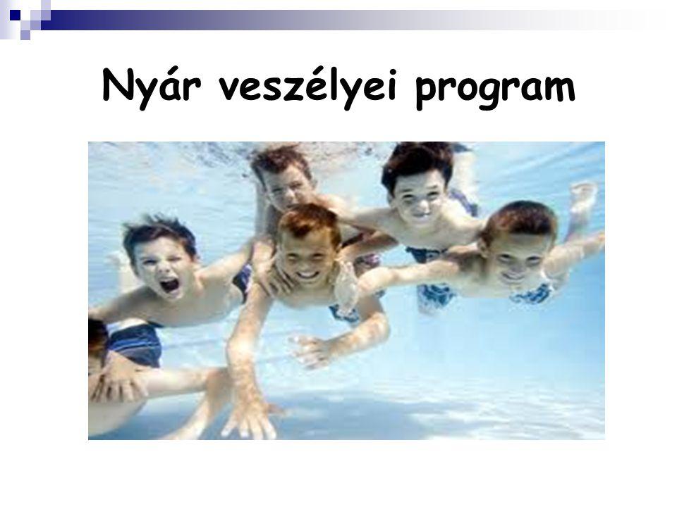 Nyár veszélyei program