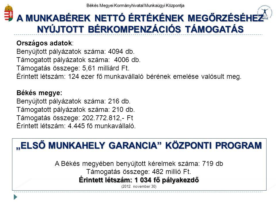 """""""ELSŐ MUNKAHELY GARANCIA KÖZPONTI PROGRAM"""