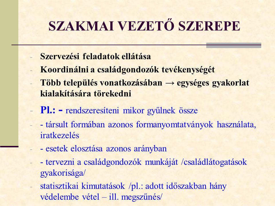 SZAKMAI VEZETŐ SZEREPE