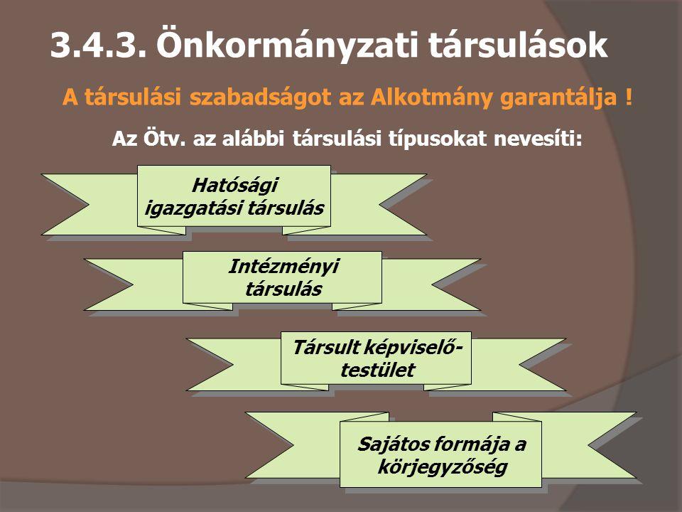 3.4.3. Önkormányzati társulások