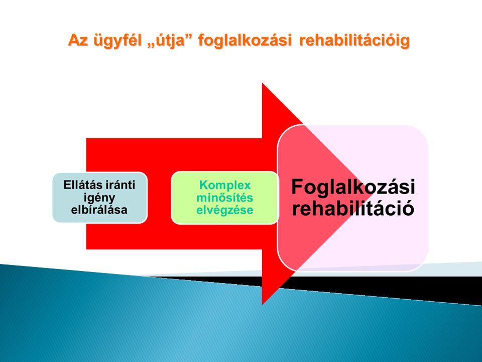 """Az ügyfél """"útja foglalkozási rehabilitációig"""