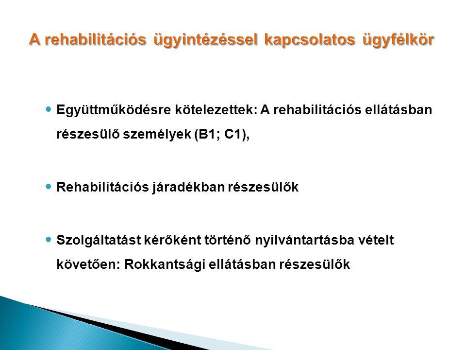 A rehabilitációs ügyintézéssel kapcsolatos ügyfélkör