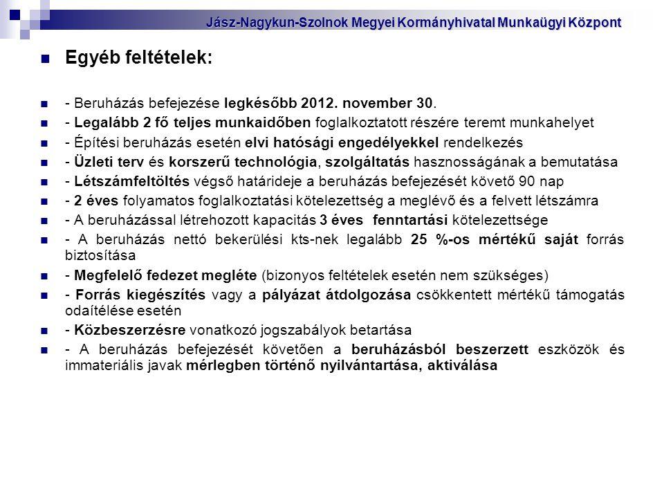 Egyéb feltételek: - Beruházás befejezése legkésőbb 2012. november 30.