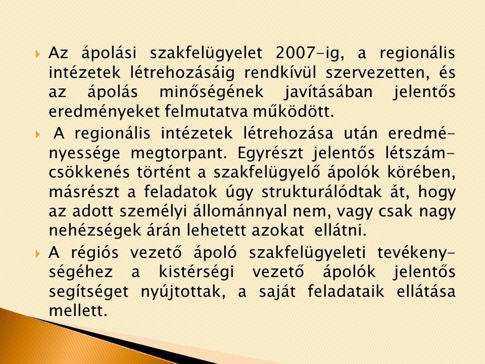 Az ápolási szakfelügyelet 2007-ig, a regionális intézetek létrehozásáig rendkívül szervezetten, és az ápolás minőségének javításában jelentős eredményeket felmutatva működött.