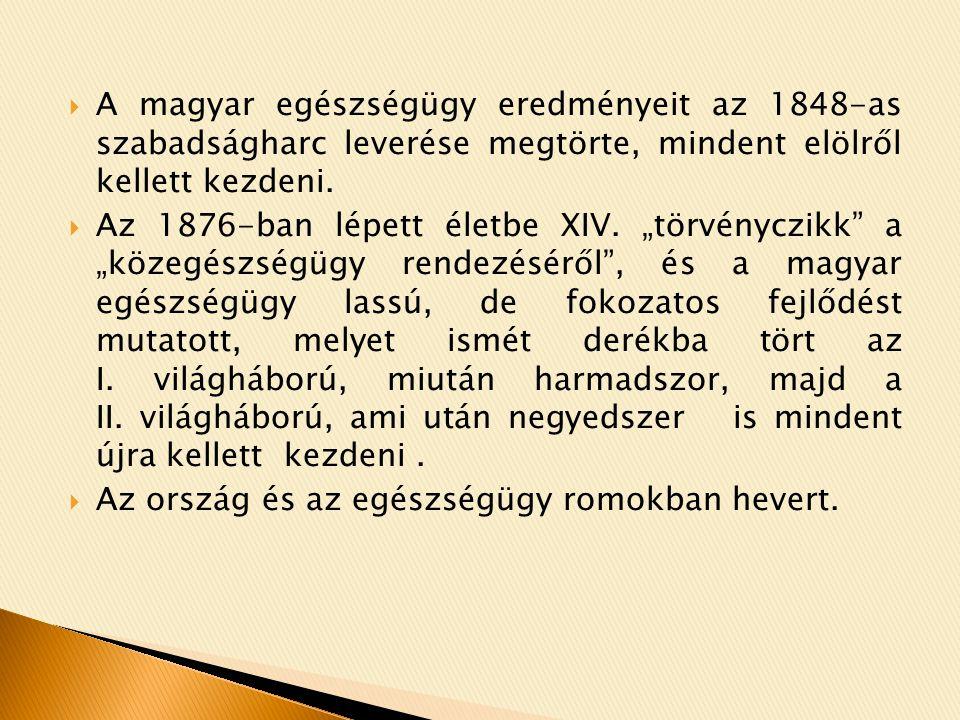 A magyar egészségügy eredményeit az 1848-as szabadságharc leverése megtörte, mindent elölről kellett kezdeni.