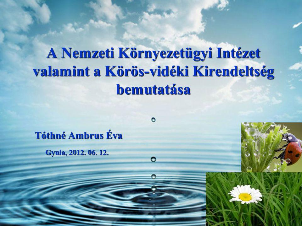 A Nemzeti Környezetügyi Intézet valamint a Körös-vidéki Kirendeltség bemutatása