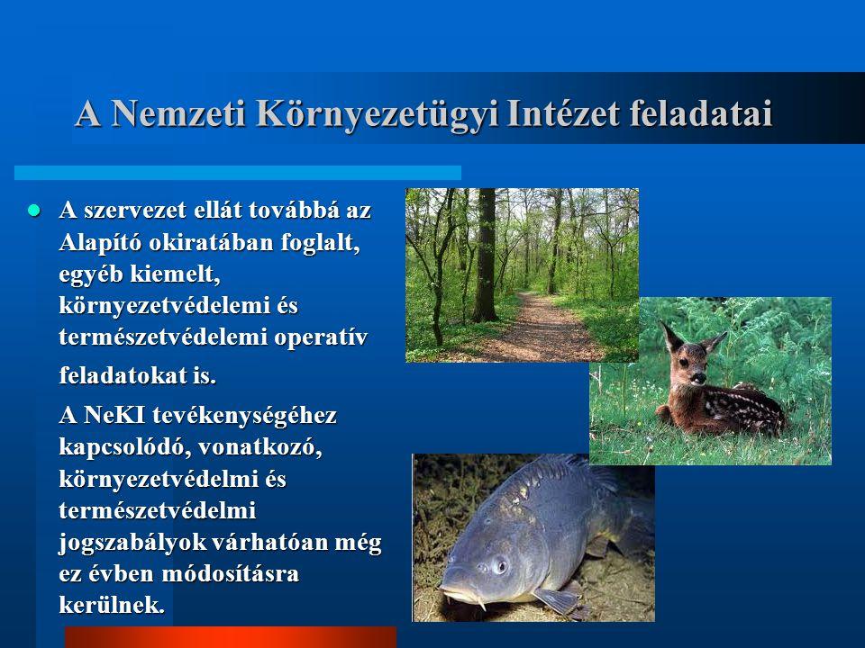 A Nemzeti Környezetügyi Intézet feladatai