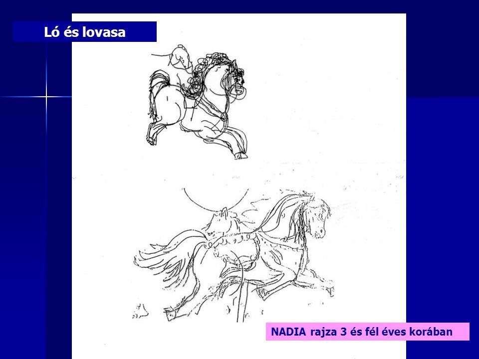Ló és lovasa NADIA rajza 3 és fél éves korában