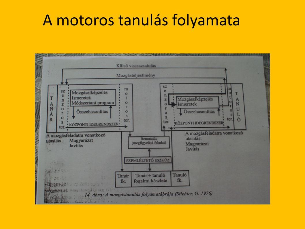 A motoros tanulás folyamata