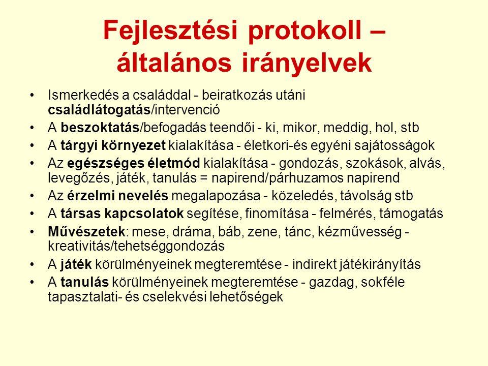 Fejlesztési protokoll – általános irányelvek