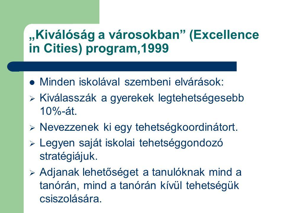 """""""Kiválóság a városokban (Excellence in Cities) program,1999"""