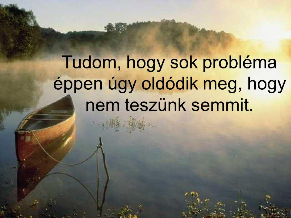 Tudom, hogy sok probléma éppen úgy oldódik meg, hogy nem teszünk semmit.