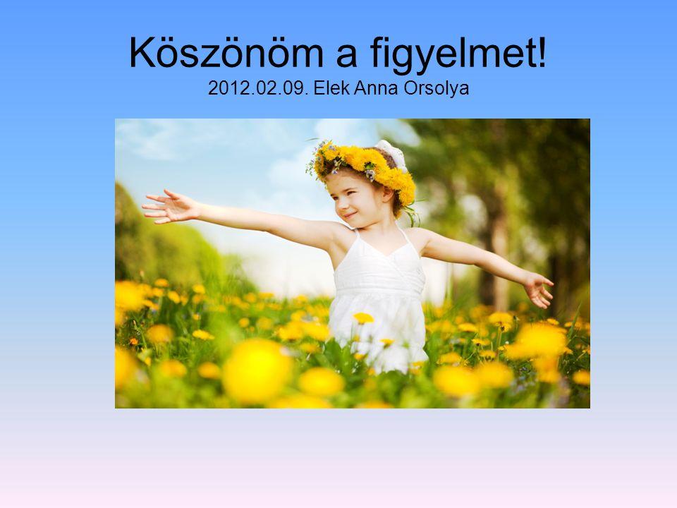 Köszönöm a figyelmet! 2012.02.09. Elek Anna Orsolya