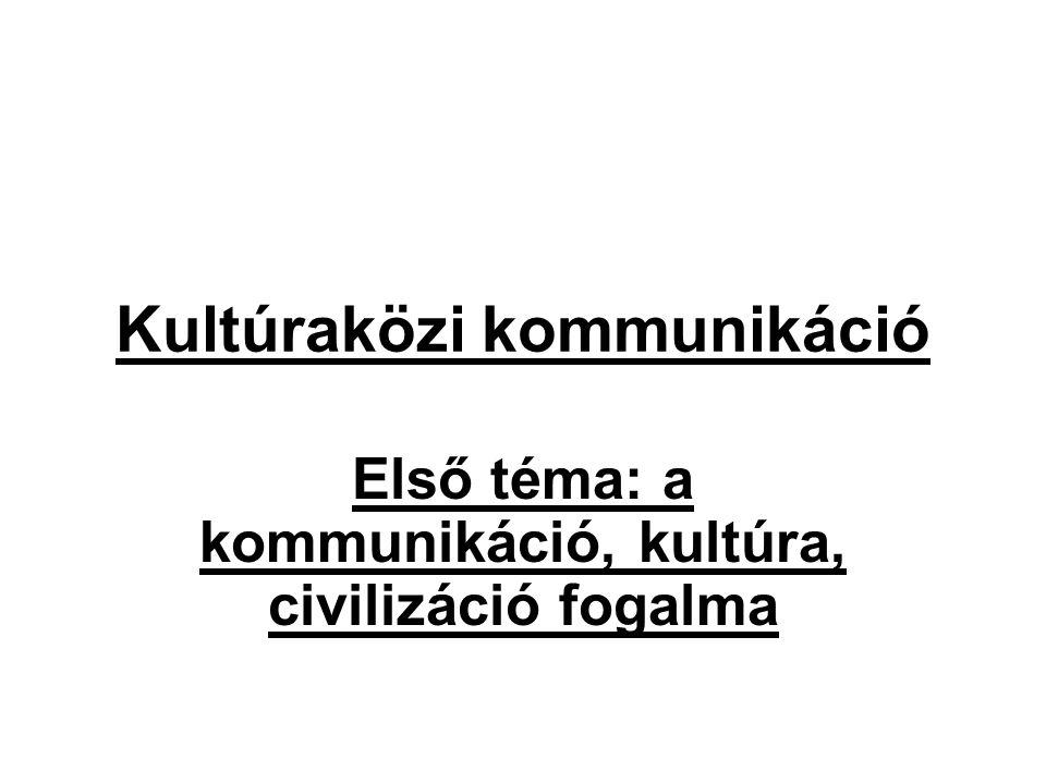 Kultúraközi kommunikáció