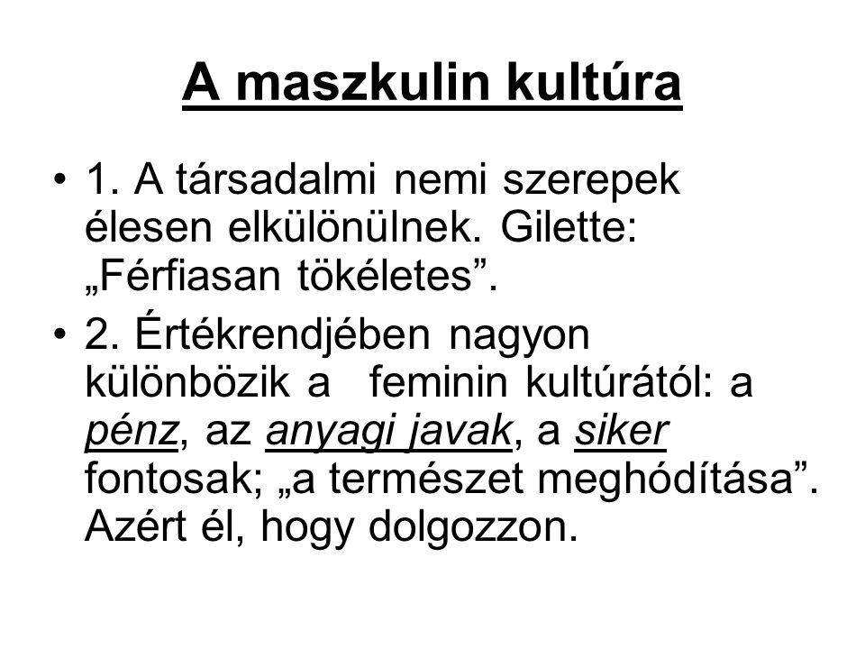 """A maszkulin kultúra 1. A társadalmi nemi szerepek élesen elkülönülnek. Gilette: """"Férfiasan tökéletes ."""